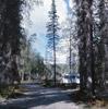 Centennial Park campsite, Soldotna 1967