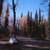Centennial Park, Soldotna 1967