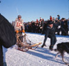 Dr. Roland Lombard, Alaska State Champion sled dog races 1964
